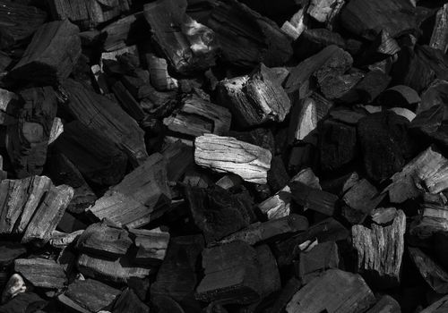 charcoal chips
