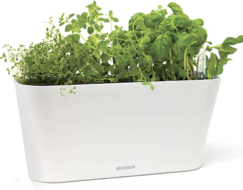 Aquaphoric Herb Garden Tub - Self Watering Passive Hydroponic Planter