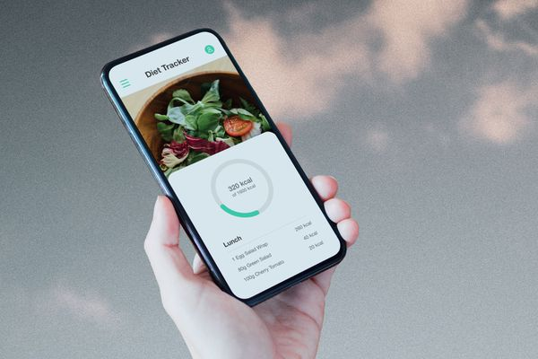 Image of diet tracking app on phone