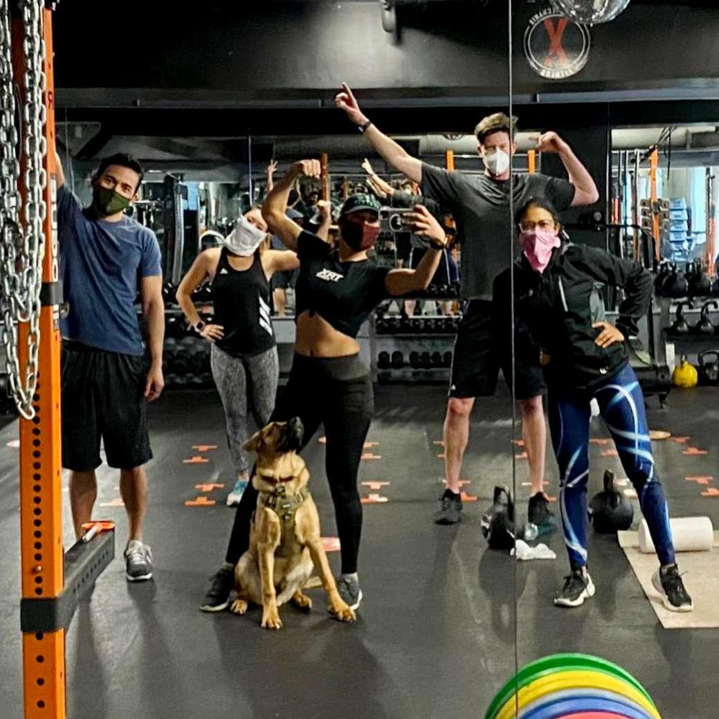 body mechanix gym