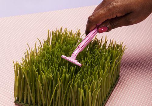 Hand taking razor to grass