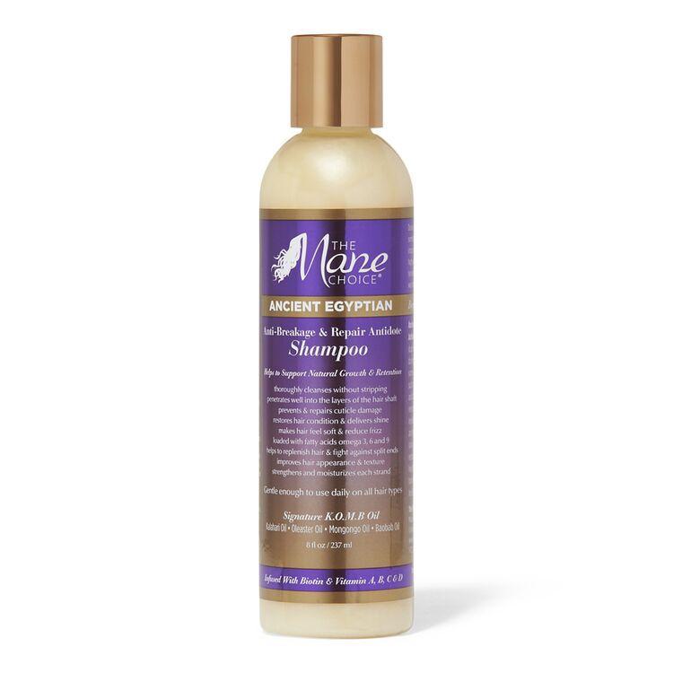 The Mane Choice Breakage and Repair Shampoo
