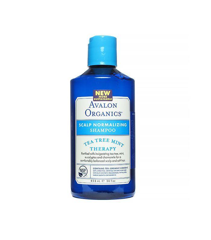 Tea Tree Mint Scalp Normalizing Shampoo, 14 Fluid Ounce