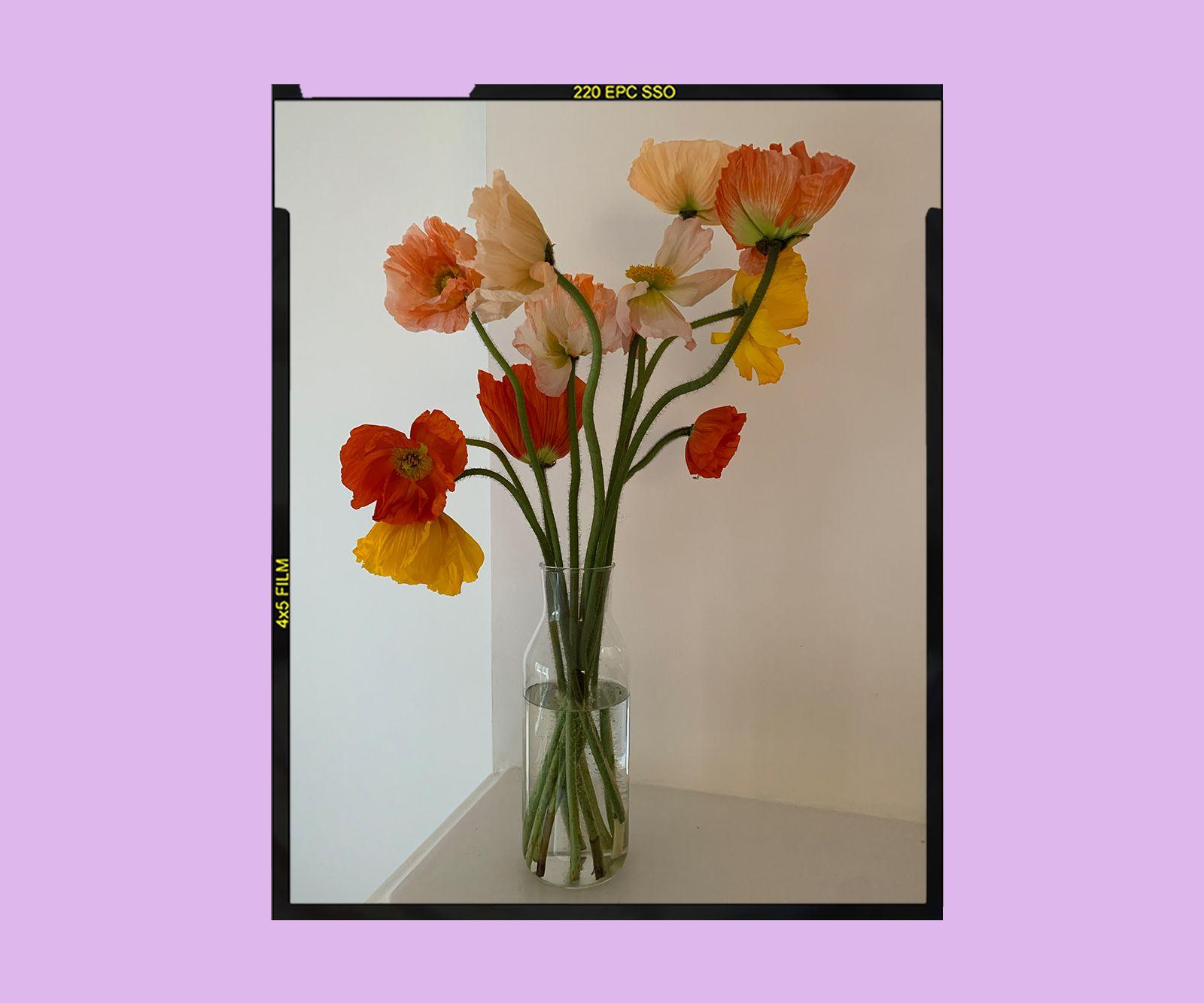 Olivia Cooke's Flowers