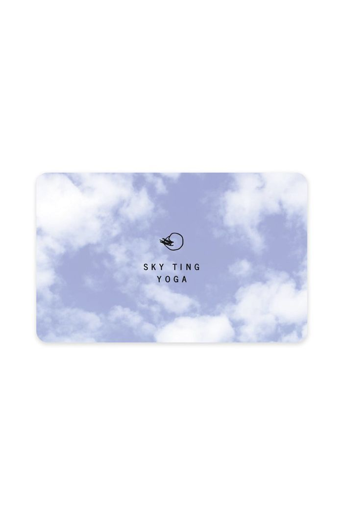 sky ting gift card
