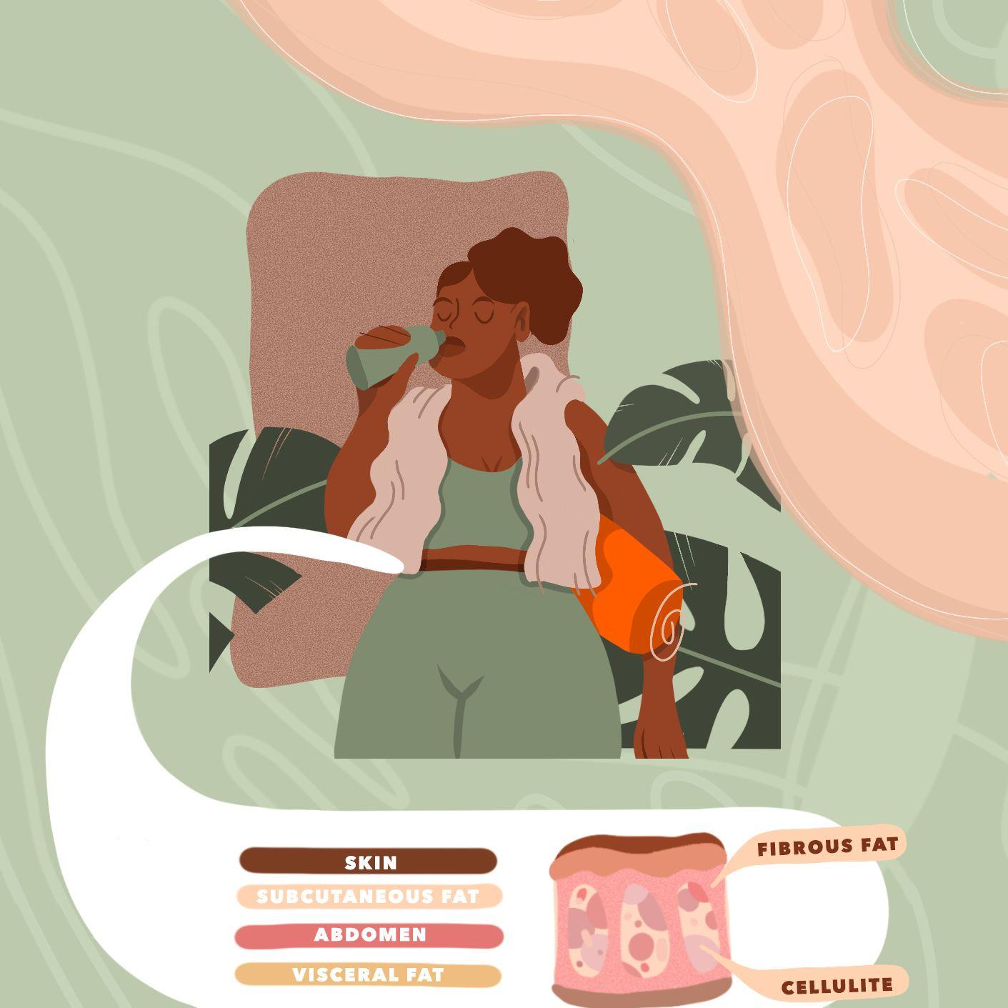 types of body fat illustration