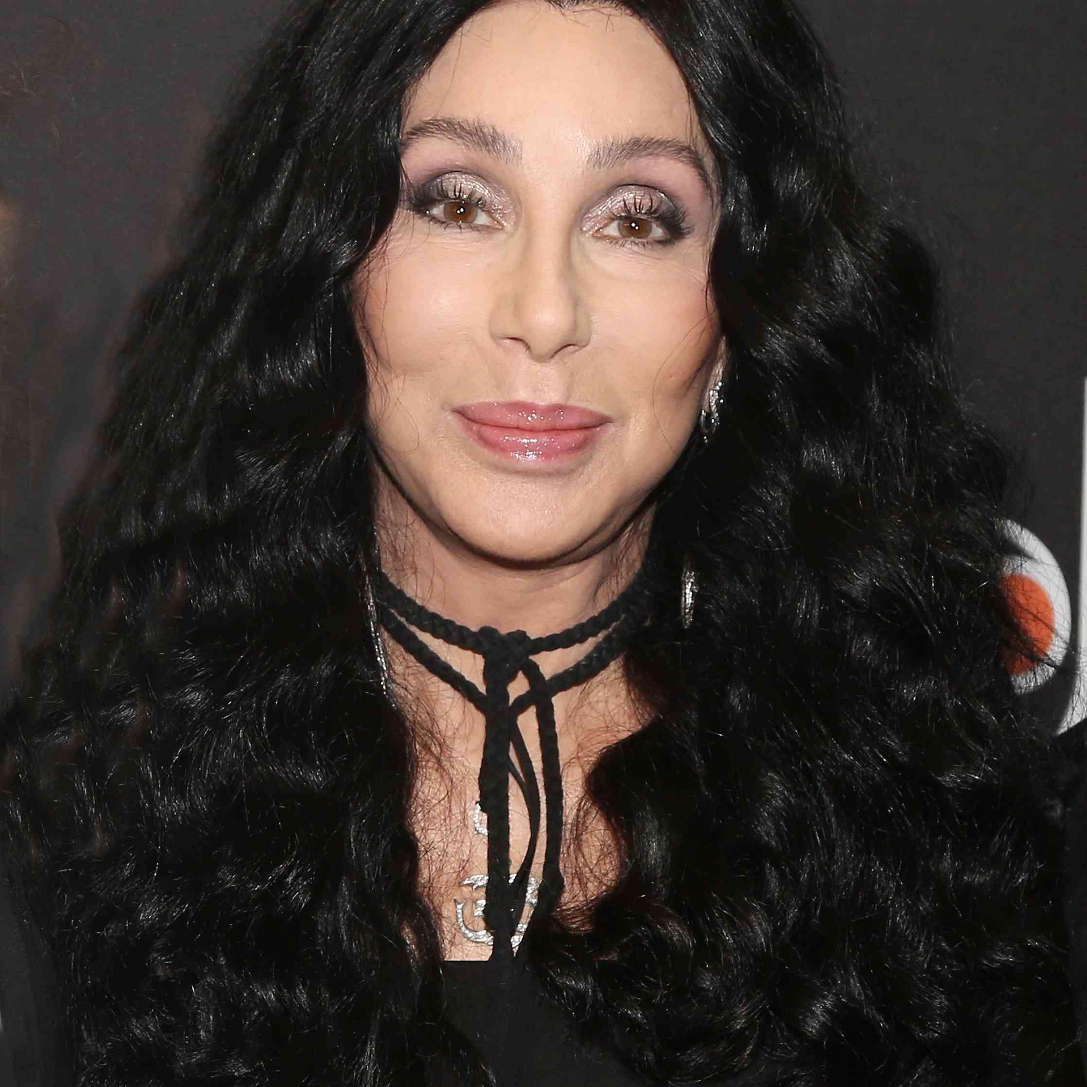 Cher Volume Hair