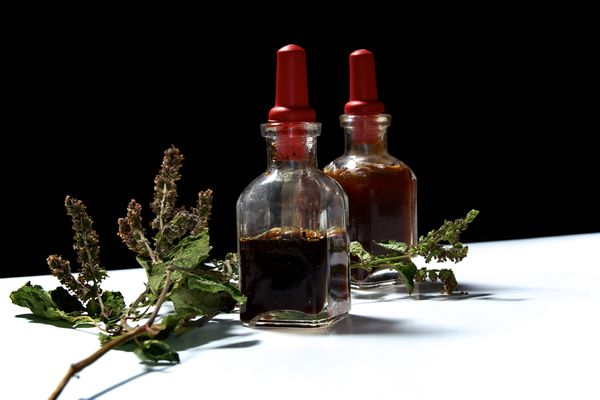 Dried Patchouli Flowers and Oil