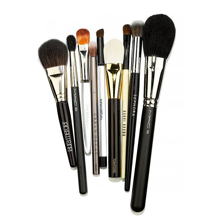 Several makeup brushes of different sizes