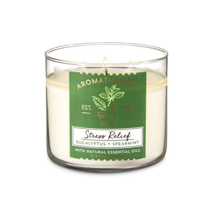 Bath & Body Works Eucalyptus and Spearmint Scented Candle