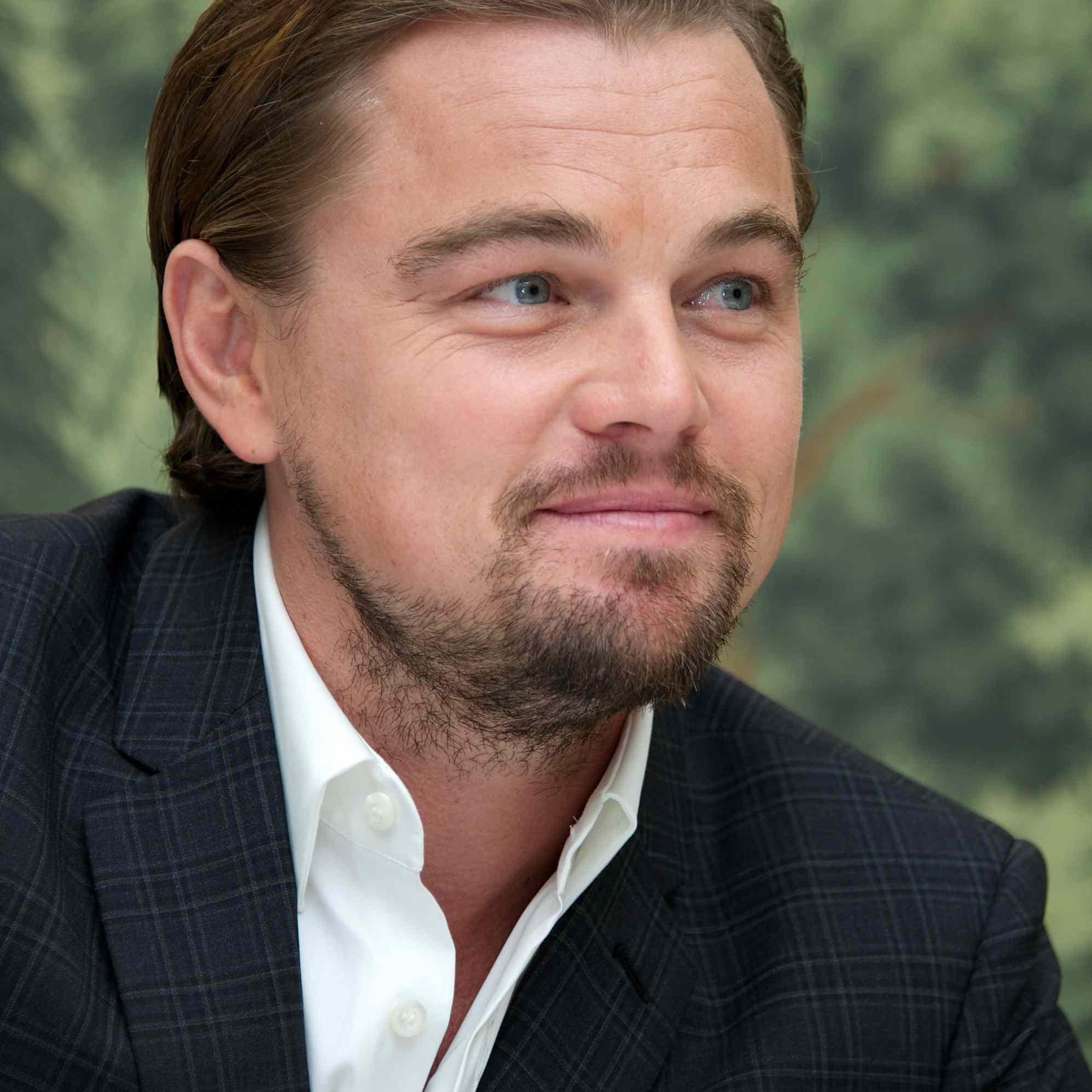Leonardo DiCaprio Hair 2013