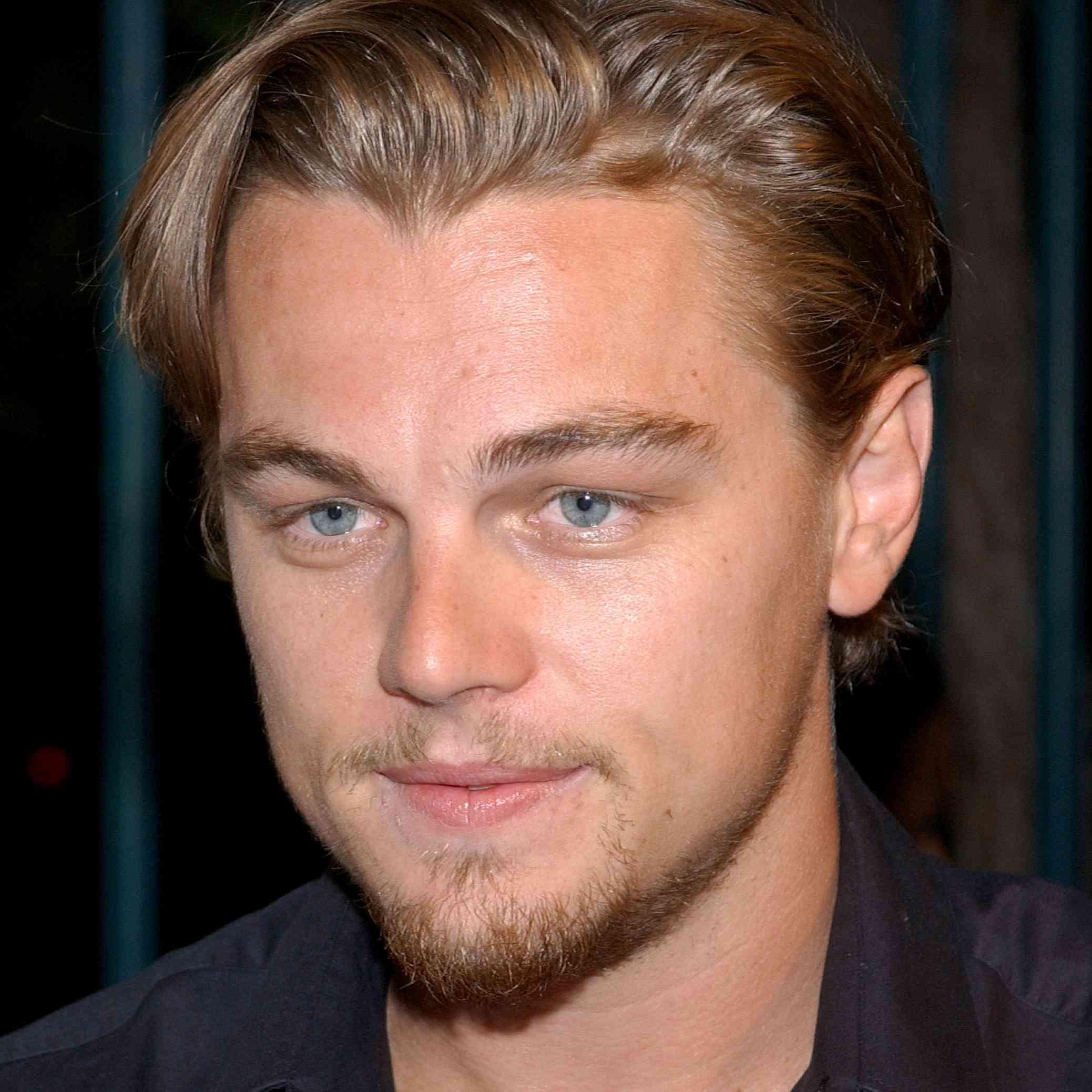 Leonardo DiCaprio Hair 2002