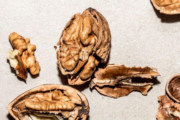 cracked walnut shells