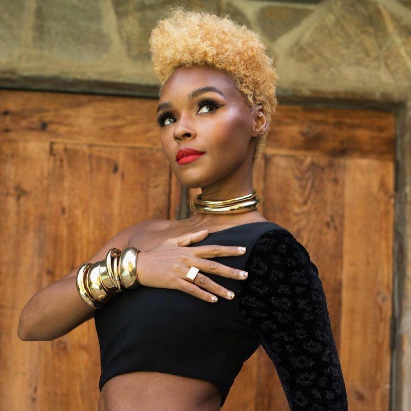 Short Medium Long Black Hairstyles Bleached Crop Janelle Monae