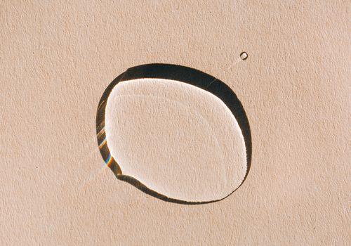 sunny drop of oil