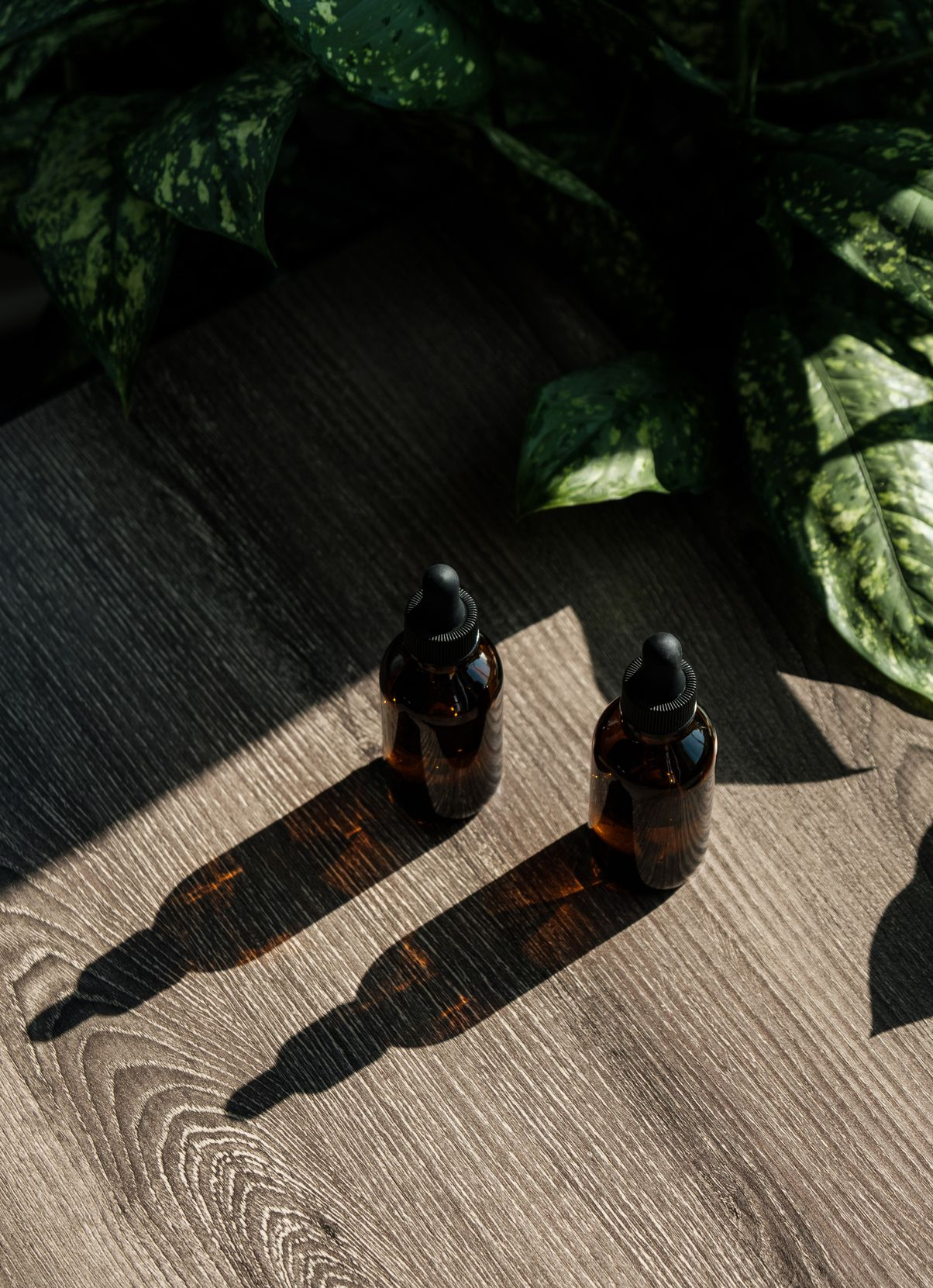 The 10 Best CBD Oils to Use From Head-to-Toe