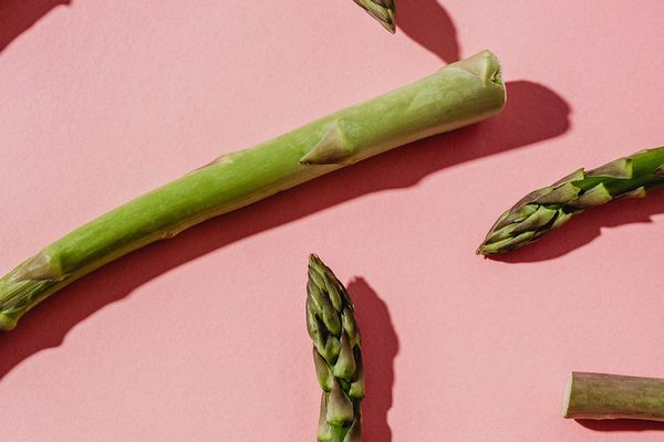 asparagus root