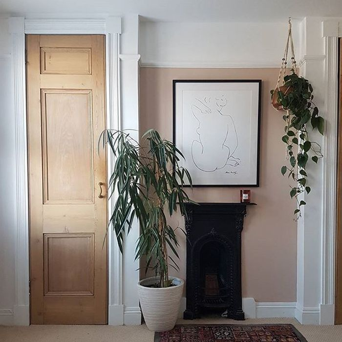 Tall plant and a hanging plant in a minimal home