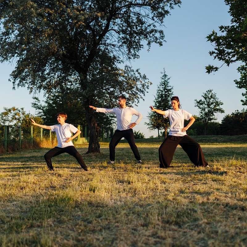 tai chi class in a field