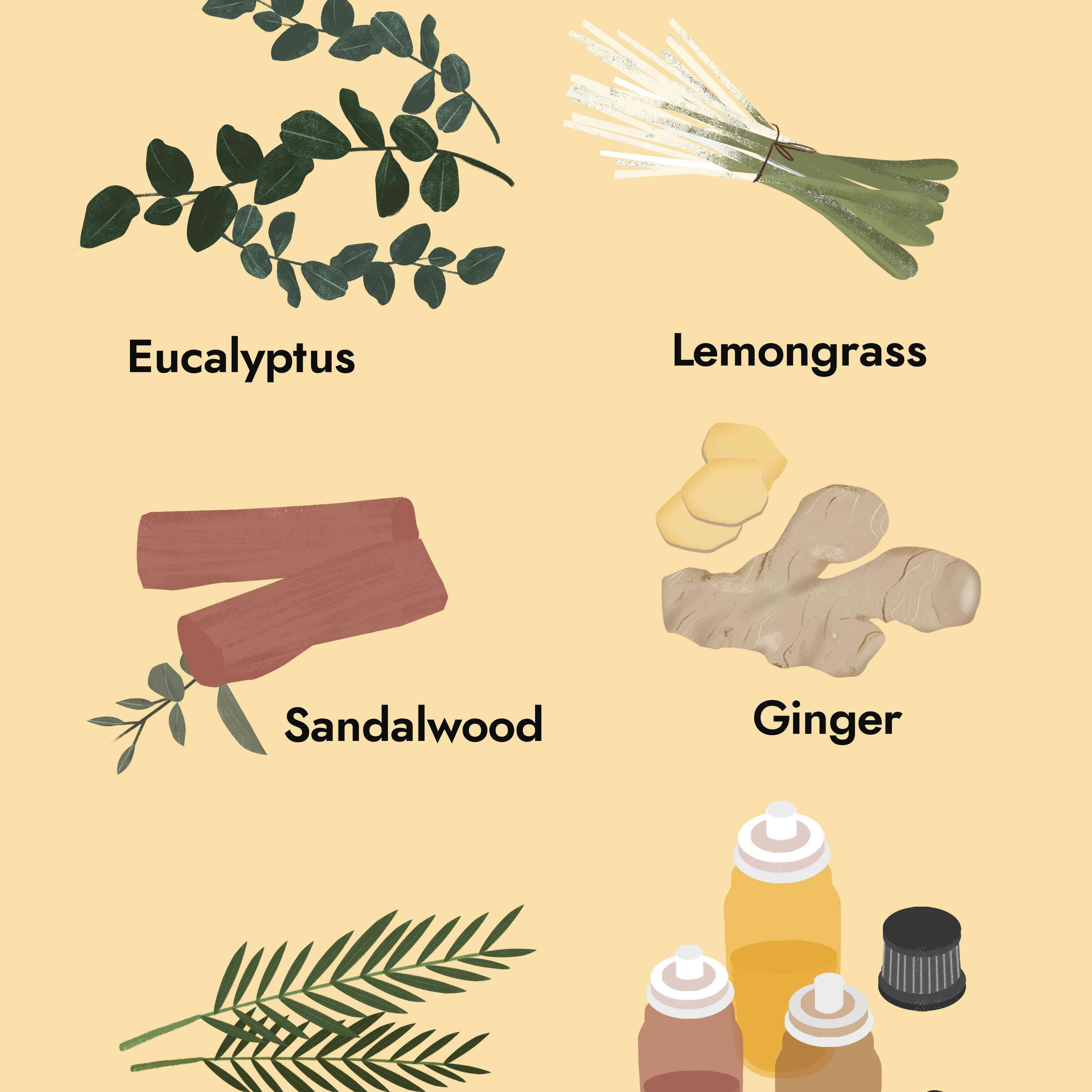 10 Essential Oils For A Cold