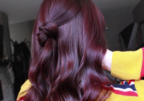 plum hair color on half bun