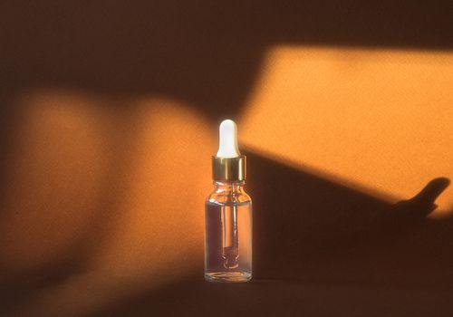 still life oil sunlight