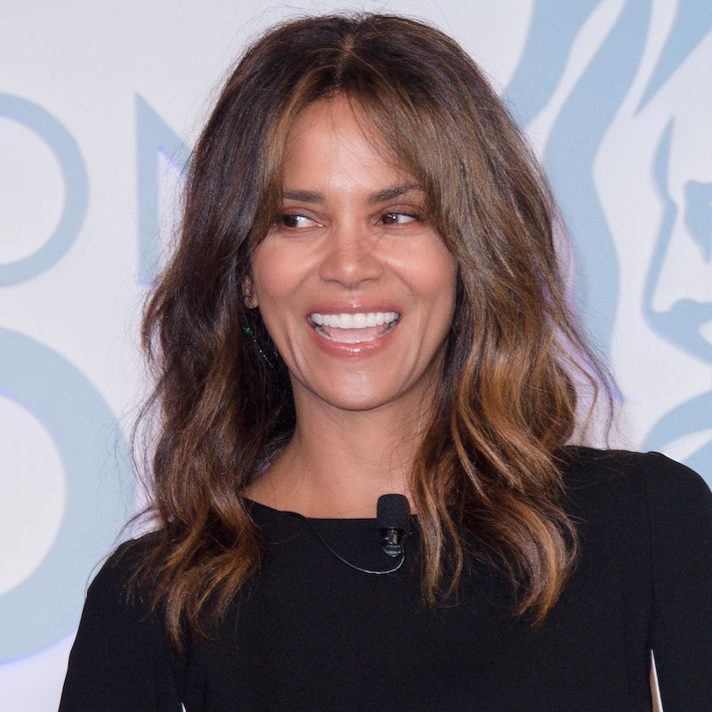 Brown Hair Color Halle Berry