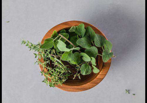 herbs in a wooden pot
