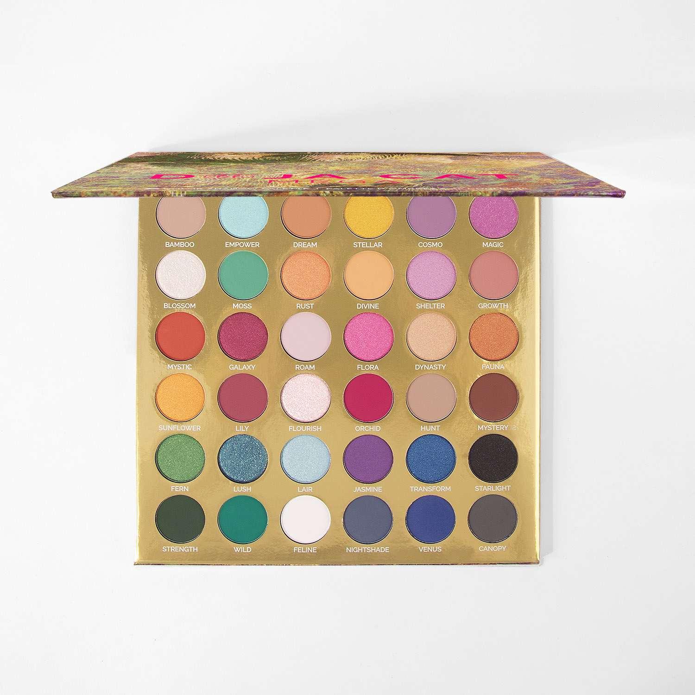 BH Cosmetics Doja Cat 36-Color Palette