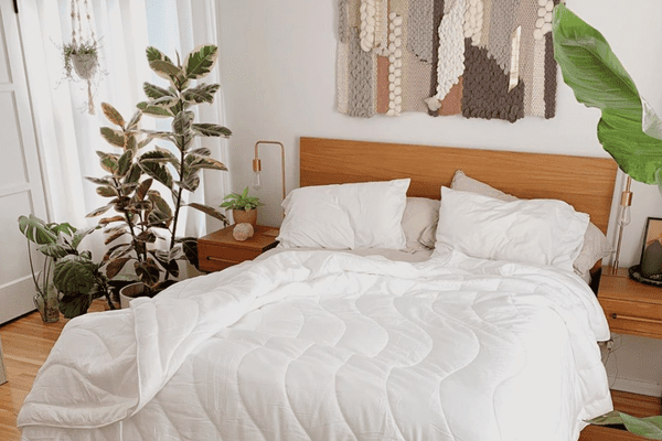 bedroom with white bedding and plants