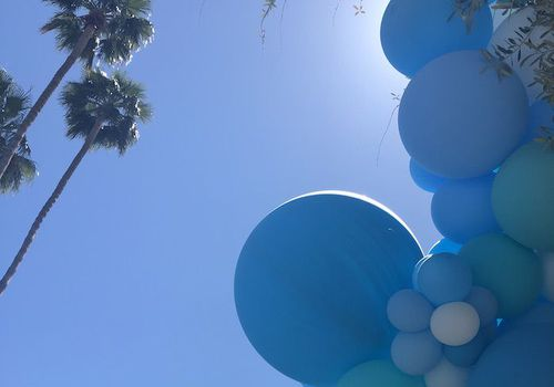 sky with palm trees and balloons