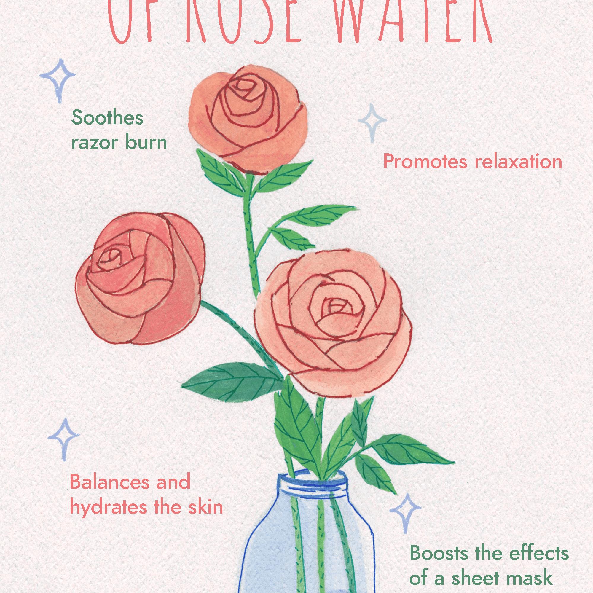 Red Rose Flower Benefits