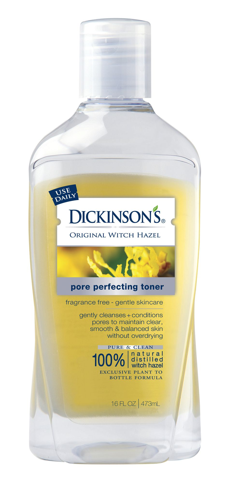 dickinsons pore perfecting toner
